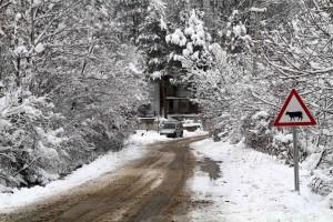 Köy yoları açık (2)