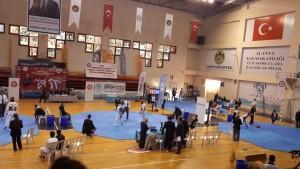 Taekwondo alanya