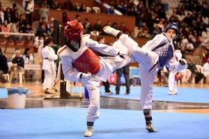 Teakwondo alanya 5