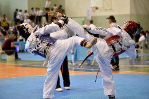 Taekwondo mÅsabaka