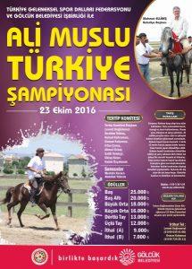 turkiye-kosusu-afisrgb