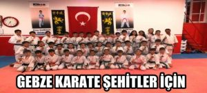 gebze-karate-sehitler-icin